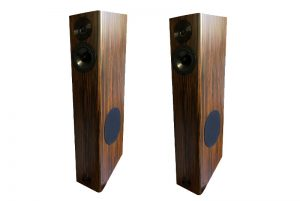 Audio Physic Virgo V
